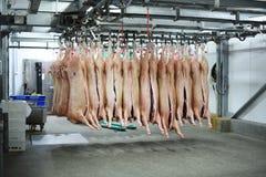 Carcasse di maiale sui ganci Fotografia Stock