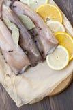 Carcasse fraîche de calmar avec des épices Images stock