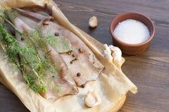 Carcasse fraîche de calmar avec des épices Photographie stock libre de droits
