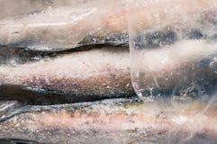 Carcasses frozen fish pollock Royalty Free Stock Photos