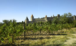 Carcassone Obrazy Royalty Free