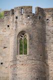 carcassone fönster Arkivbilder