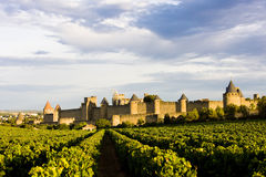 Carcassonne royaltyfri bild