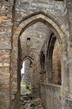 Carcassonne Imagens de Stock