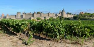 Carcassonne Στοκ εικόνες με δικαίωμα ελεύθερης χρήσης