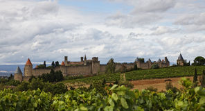 Carcassonne fortified town. Image of the fortified town of Carcassonne seen from a vineyard in the proximity Royalty Free Stock Photo