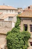 Carcassonne, France. The tiled roofs of the old town Royalty Free Stock Photos