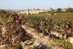 Carcassonne, southern France Royalty Free Stock Photo