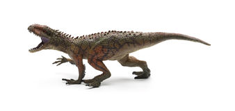 Carcharodontosaurus toy. Sidve view Carcharodontosaurus toy on a white background Stock Image