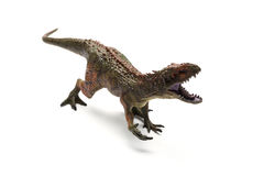 Carcharodontosaurus toy. On a white background Stock Photos