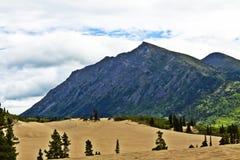 Carcosswoestijn in Yukon in Canada Stock Foto