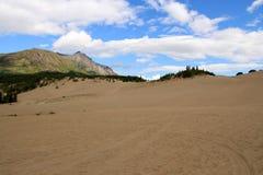Carcross沙漠, Carcross,育空,加拿大 免版税库存图片