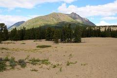 Έρημος Carcross, Carcross, Yukon, Καναδάς Στοκ εικόνες με δικαίωμα ελεύθερης χρήσης
