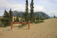 Carcross desert Royalty Free Stock Photo