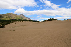 Carcross Desert, Carcross, Yukon, Canada Royalty Free Stock Image