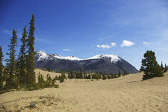 Carcross desert and mountains Royalty Free Stock Image