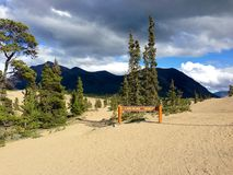 Carcross Desert, Yukon Territory, Canada. The Carcross Desert, between Carcross and Whitehorse in the Yukon Territory, isn't a desert at all, but the remains of Stock Photography