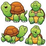 Carácter de la tortuga Imagen de archivo libre de regalías