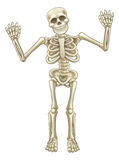 Carácter del esqueleto de la historieta Imagen de archivo