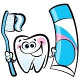 Carácter molar del diente de la historieta feliz que sostiene el cepillo de dientes dental Imagen de archivo