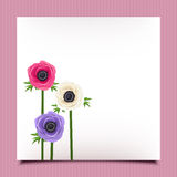 Card with anemone flowers. Vector eps-10. Royalty Free Stock Images