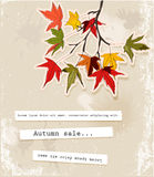 Card with autumn leaves Royalty Free Stock Photos