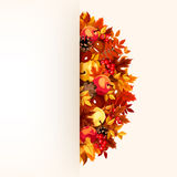 Card with autumn leaves. Vector eps-10. Vector beige card with colorful autumn leaves, apples, chestnuts, cones and rowanberries Stock Photography