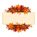 Card with autumn leaves. Vector illustration. Royalty Free Stock Photography