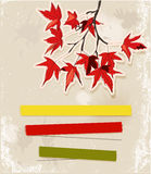 Card with autumn leaves. Royalty Free Stock Images
