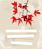 Card with autumn leaves. Royalty Free Stock Photography