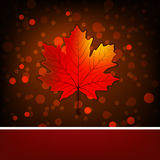 Card with autumn maple leaf template. EPS 8 Stock Image