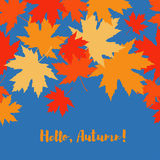 Card with autumn maple leaves. Golden Autumn. Flat design royalty free illustration