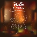Card with autumn symbols. Scattered on the background of vague Royalty Free Stock Photos