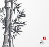 Card with bamboo on white background Royalty Free Stock Image