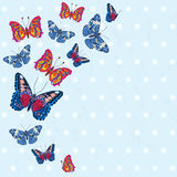 Card with beautiful bright butterflies, polka dot pattern Royalty Free Stock Photo