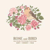 Card with bird, roses. Royalty Free Stock Images