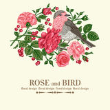 Card with bird, roses. Royalty Free Stock Image