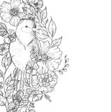 Card with birds and flowers. Line drawings, ink drawing, hand drawn illustration Royalty Free Stock Images