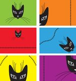 Card with a black cat. Card with a muzzle of elegant black cat Royalty Free Stock Image