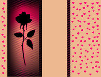 Card with black rose Royalty Free Stock Photo