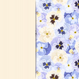 Card with blue pansy flowers. Vector eps-10. Stock Images