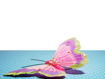 Card with butterfly Royalty Free Stock Photos