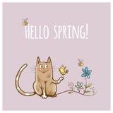 Card with cat. Vector spring card with cute cartoon cat,  bird and bees Stock Photos