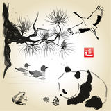 Card with cedar in the bird and panda bear Royalty Free Stock Images