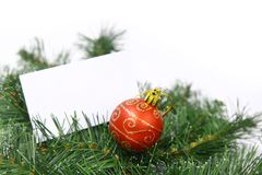 Card on christmas tree. Blank business card and a red christmas ball in a christmas tree Royalty Free Stock Photography