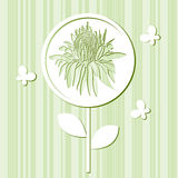 Card with a chrysanthemum and butterflies Royalty Free Stock Photo