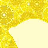 Card with citrus. Mix. Lemon. Vector Stock Photography