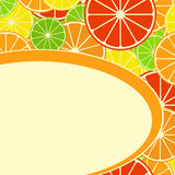 Card with citrus mix. Card with stylized citrus fruit. Orange, grapefruit, lemon, lime. Vector illustration Royalty Free Stock Photography
