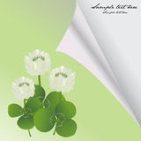 Card with clovers for St. Patrick's Day Royalty Free Stock Image