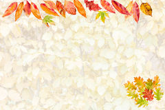 Card with collection of colorful autumn leaves Stock Photo